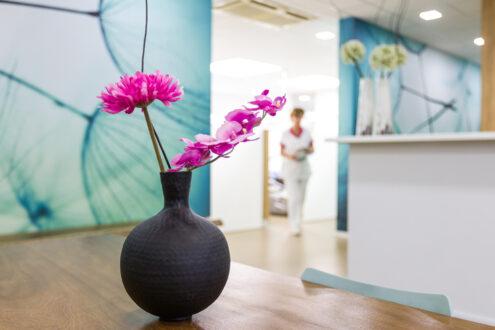 orthodontist Zaandam - interieur TopOrtho Zaandam