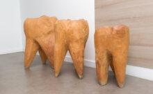 orthodontist Enkhuizen - orthodontiepraktijk TopOrtho Enkhuizen