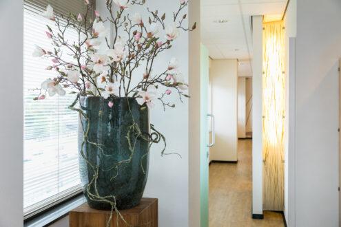 orthodontist Rotterdam - interieur TopOrtho Rotterdam